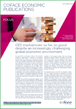 Focus CEE insolvencies